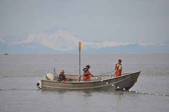 Alaska Cook Inlet setnetters make up a historic fishery and fleet. Amy Grannum photo.