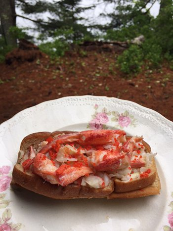 2016 19 0614 LobsterRollCamp