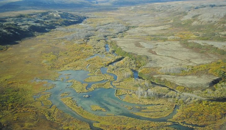 The Upper Tularik Floodplain in the Bristol Bay watershed in Alaska. EPA photo.