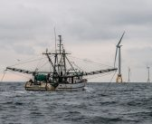 Fishing industry proposes 'reset' for offshore wind energy