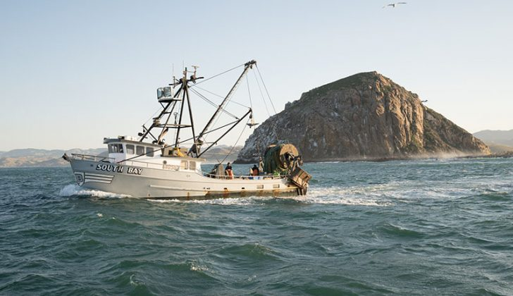 Skipper-owner Rob Seitz runs his 58-foot trawler South Bay out of Morro Bay, Calif. Corey Arnold photo/http://www.coreyfishes.com/