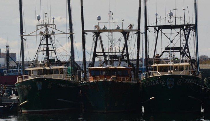 Carlos Seafood boats tied up in New Bedford, Mass., in 2016. Doug Stewart photo.