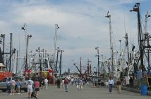 Members of the public explore the docks of New Bedford during a past edition of the city's annual Working Waterfront Festival. Image courtesy New Bedford Working Waterfront Festival.