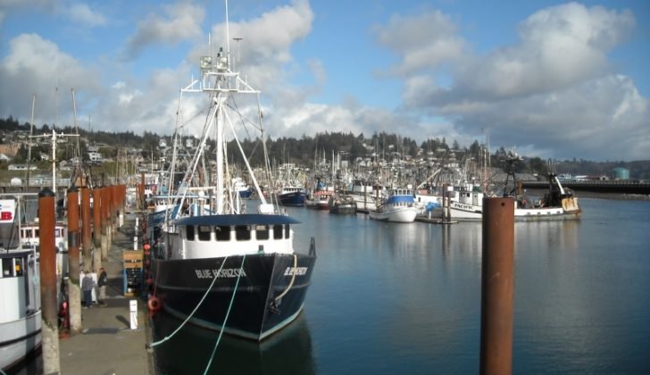 Oregon's Newport Harbor. Creative Commons photo by D. Reinhart.