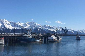 A sparkling April day in Seward, Alaska. Jessica Hathaway photo.