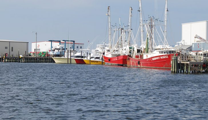 Shrimp boats tied up in Wanchese, NC. Creative Commons photo by Geographer.
