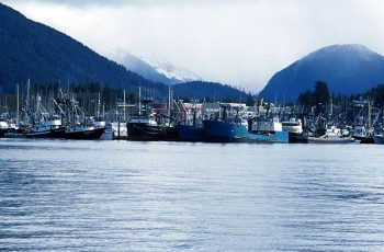 Boats tied up in Sitka, Alaska. Charlie Ess photo.