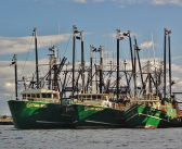 New Bedford auction owners withdraw offer for Carlos Rafael boats