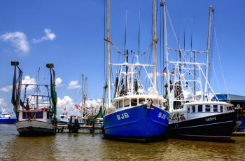 Shrimp boats tied up in Venice, La. Creative Commons photo by Flickr user Finchlake2000.