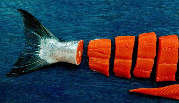 Bristol Bay sockeye salmon. BBRSDA photo.