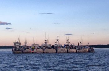 Salmon boats lined up in Bristol Bay. Katherine Carscallen photo.
