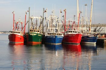 Fishing boats tied up in New Bedford, Mass. Massachusetts Office of Travel and Tourism photo.