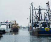 Shutdown groundfish sector wants a meeting with NMFS