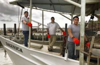 Gloves donated to fishermen in the Gulf of Mexico