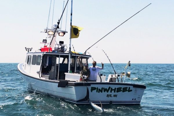 Boat of the Month: Pinwheel