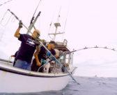 Wicked Tuna: Gloucester goes global