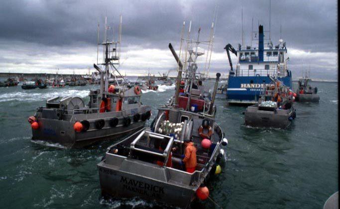Bristol Bay gillnetters