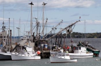 Maine commercial fish pier gets $830K grant for upgrades