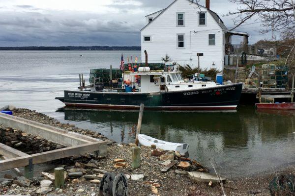 Boat of the Month January 2019: Wild Irish Rose