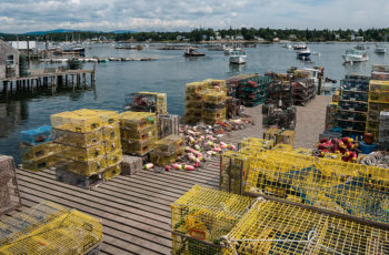 Why local fisheries matter — with or without a global pandemic