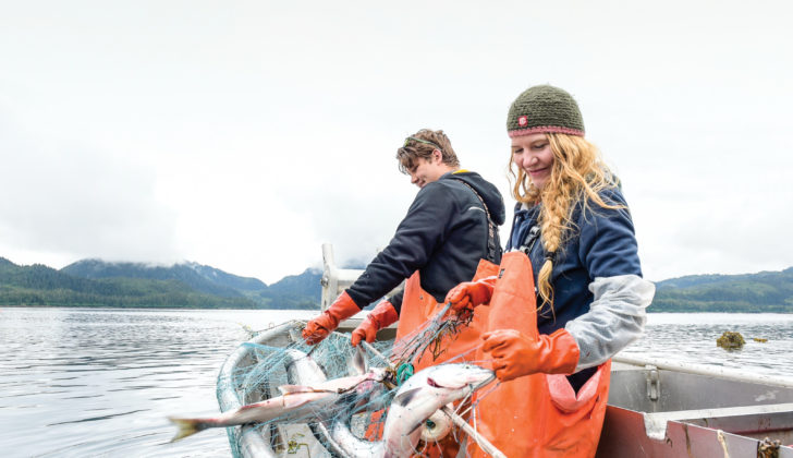 Quality handling is more important than ever across the Alaska seafood industry. Blythe Thomas photo.