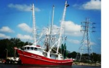 65'X20′ Steel Documented Shrimp Trawler