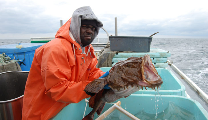 Larry Alade of the Northeast Fisheries Science Center holds a tagged monkfish prior to release during a cooperative monkfish migration study with commercial fishermen in 2009 and 2010. NOAA photo/ Pasha Ivanov