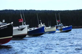 The Winter Harbor lobster boat races were crowded with 167 boats Aug. 10. Jon Johansen photo.