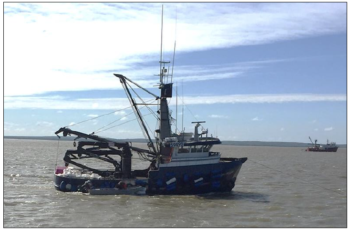 NTSB: Overloading, altered stability linked to tender sinking