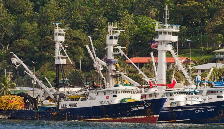 Tuna boats at Pago Pago in American Samoa. Greenpeace photo.