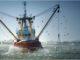DryMax seal from Duramax Marine hangs tough