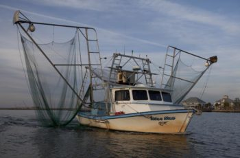 The Louisiana shrimp boat Miss Nan. Louisiana Department of Fish and Wildlife.