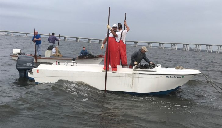 Long road to relief: Mississippi oystermen slated for $1 million in disaster checks
