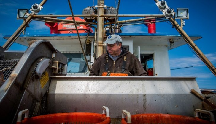 Captain Christopher Brown on the Proud Mary out of Rhode Island sorts sorts fish under electronic monitoring cameras. Photo by Ayla Fox/Nature Conservancy.